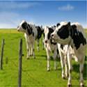 Sistemi za kmetijstvo